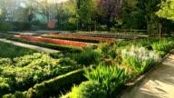 Madrid Botanic Garden - Real Jardin Botanico. Panning shot video