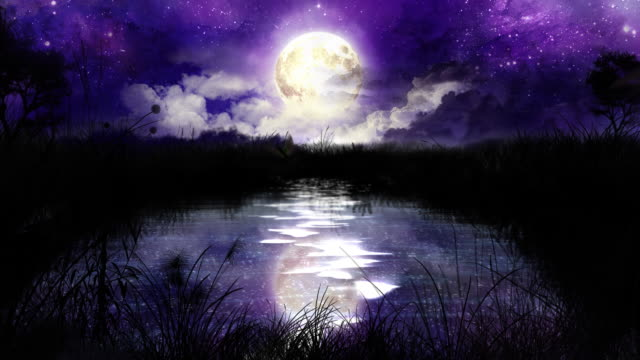 Magic Night over the pond 100% loop HD1080p video