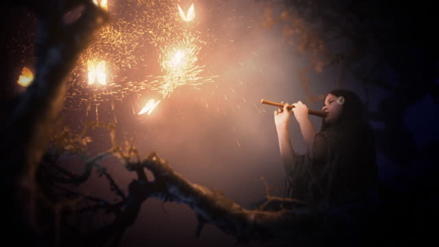 Magic scenes. Girl playing flute and glowing butterflies. Fantasy series. video