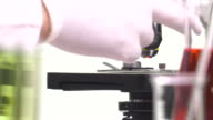 magnification change lens to a microscope video