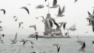 maiden tower in Istanbul video