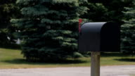 Mailbox with Heavy Traffic video