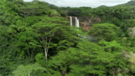 AERIAL: Majestic waterfall in the middle of lush jungle in Hawaii video