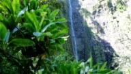 Makahiku Waterfalls, Maui, Hawaii video