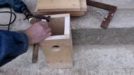 make new birdhouse in spring video