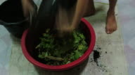 Making of Compost video