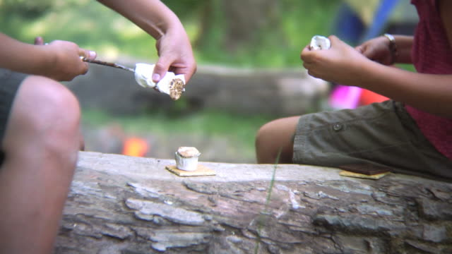 Making smores by the campfire video