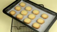 Making Vanilla Cookies 7 video
