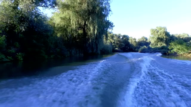 Making Waves On Danube Delta Driving A Motor Boat video