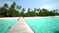 Maldives island with beach and sea video