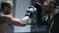 Male Boxer sparring with his trainer video
