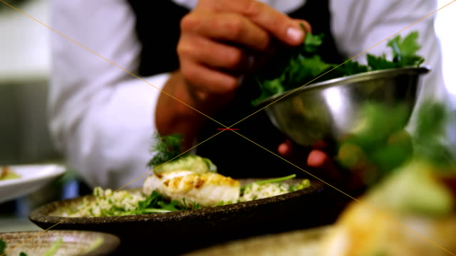 Male chef garnishing appetizer in plate video