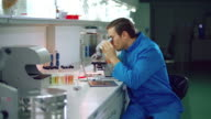 Male chemist in chemical lab. Chemistry scientist looking microscope video