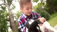 Male Child stroking his pet friend, a crossbreed puppy dog video