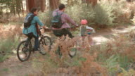 Male couple and daughter in a forest cycle past, back view video