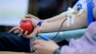 Male donor donates blood voluntarily video