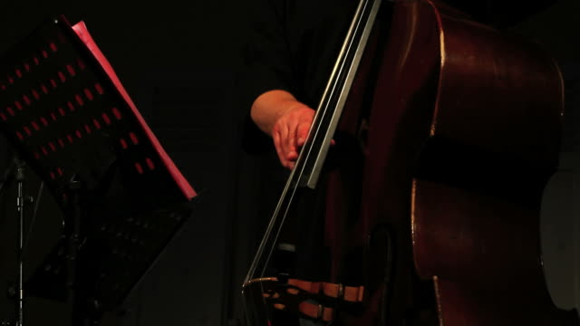 HD Male double bass player close-up video