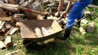Male farmer guy load chopped wood to rusty wheelbarrow cart video