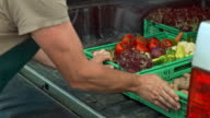 Male farmer loading his truck with produce in crates video