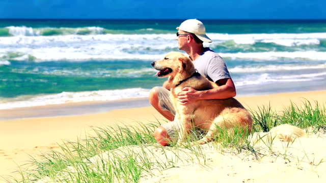 Male owner sitting on a beach with dog video