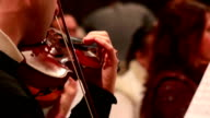 Male performs lead violin sole part playing at classical concert video