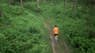 AERIAL Male runner running on forest path video