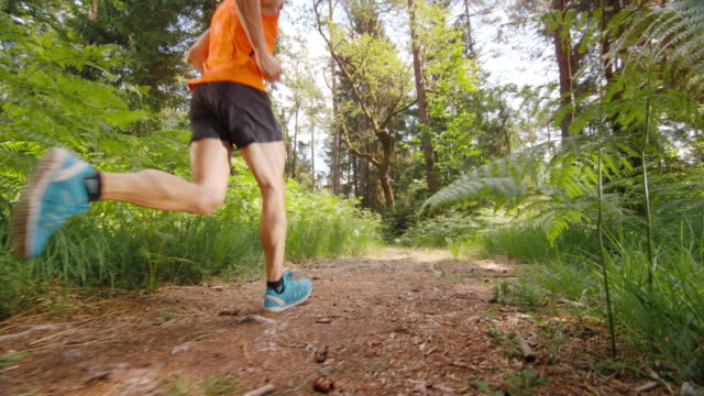 SLO MO DS Male runner running on a sunny forest path video