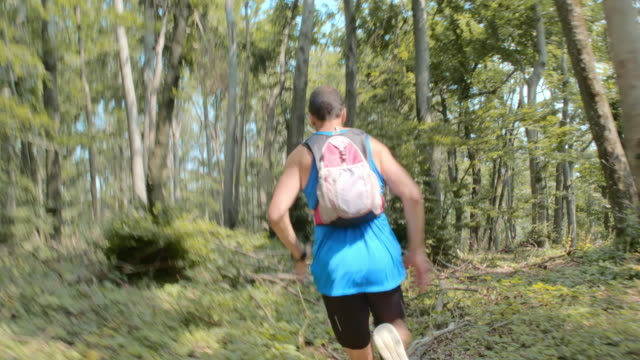 TS Male runner running through the forest video