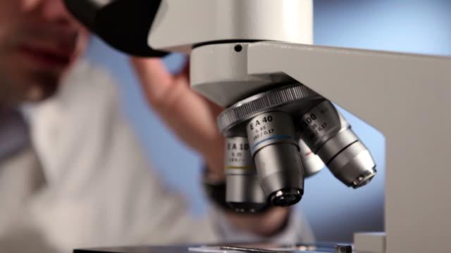 Male Scientist Researcher in the laboratory video