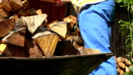 Male worker hands with gloves unload chopped wood firewood from cart video