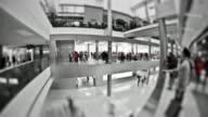 Mall Pedestrian Traffic Time Lapse BW video