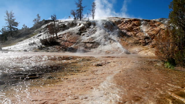 Mammoth Hot Spring Terraces in Yellowstone National Park video