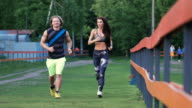 Man and woman commit a jog. They are young and attractive, communicate with each other positively video