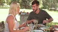 TU Man and woman eating, talking and clinking glasses at the picnic table video