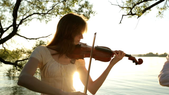 Man and woman play violin at the sunset video