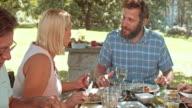 TU Man and woman talking at a family picnic video