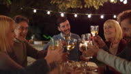DS Man clinking glasses with family members at evening  barbecue video
