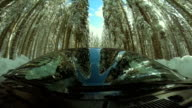 Man Driving Through A Snowy Forest video