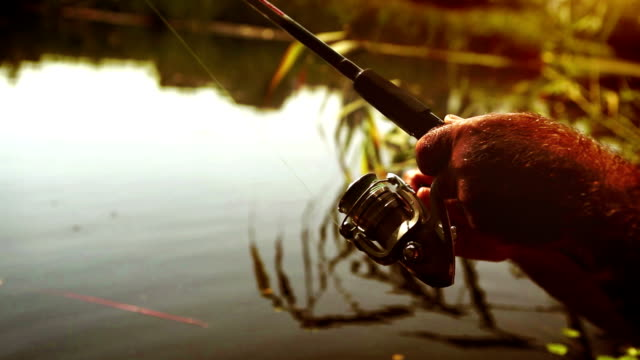 A man fishes at sunset with a spoon-bait fishing rod video