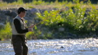 Man Fly Fishing in River video