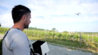 Man Flying a Drone Over Vineyard video