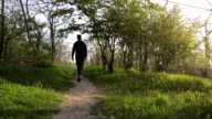 Man following the forest path in the morning. Beautiful sunrise in the forest video