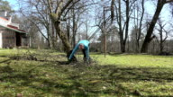 man gather branches in garden behind house. Season work spring. video