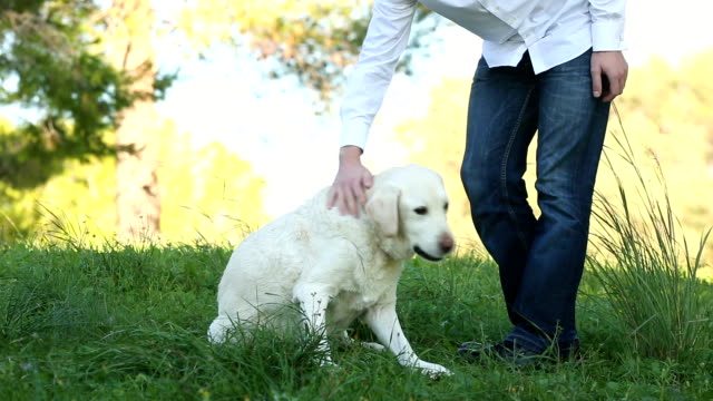 man giving food as reward to his dog video