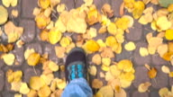 Man goes on autumn leaves video