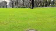 Man Golfing Hits video