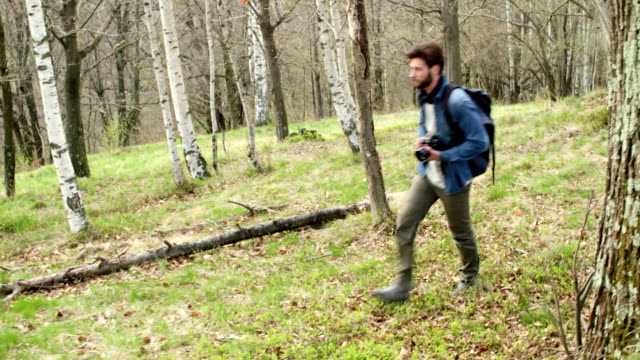 man hiking through woods looking for photos. Following side.Real people Millennial traveller backpacker adult male photographer walking on rural field to shoot photographs in autumn season. 4k video video