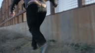 Man Hops Down Off Border Fence and Runs Alongside It video