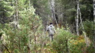 Man hunter outdoor in forest hunting alone video