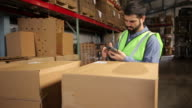 Man in shipping warehouse scans labels on boxes video